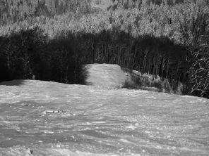 Vede cineva snowboarderul?