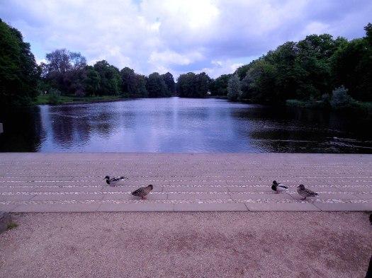 charlottenburg lac