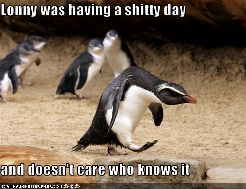 shitty day
