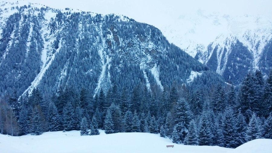 """""""Peisaj invernal cu banca"""""""