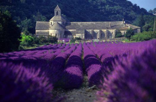levantica manastirea Notre Dame de Senanque