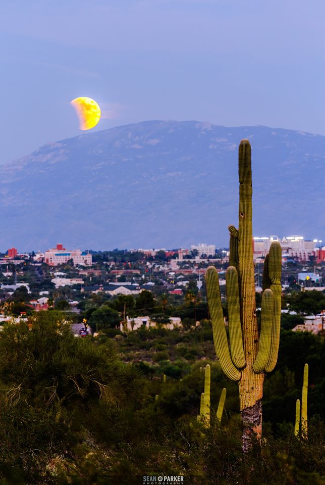 Tucso (Arizona, SUA), © Sean Parker