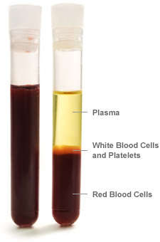 blood_parts_vial