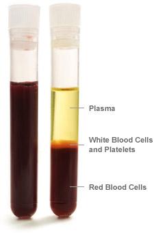 blood_parts_vial