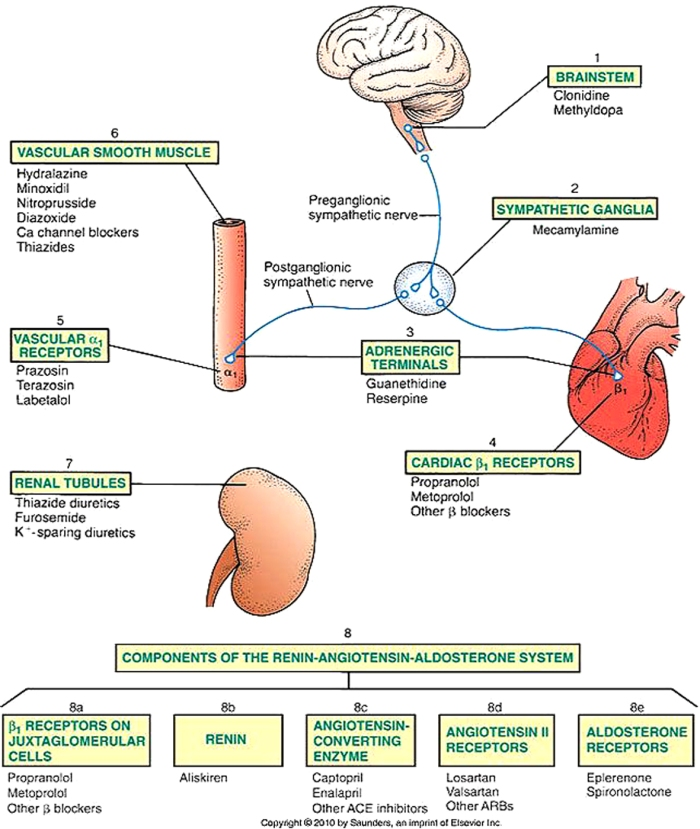 medicamente cardiace 1